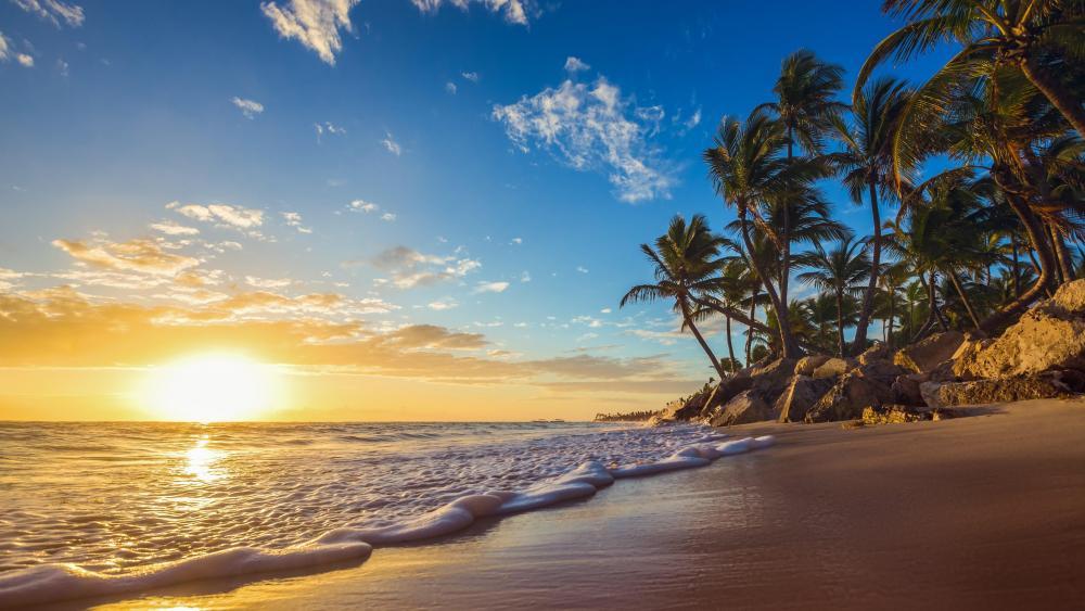 Tropical sunrise wallpaper