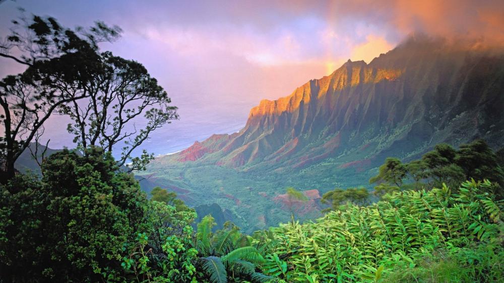 Nuʻuanu Valley, Oahu, Hawaii wallpaper