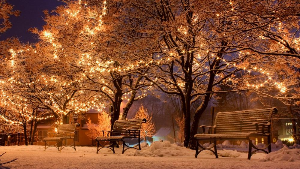 Christmas lights in the park wallpaper