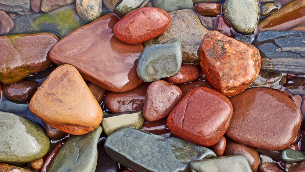 Wet pebble wallpaper