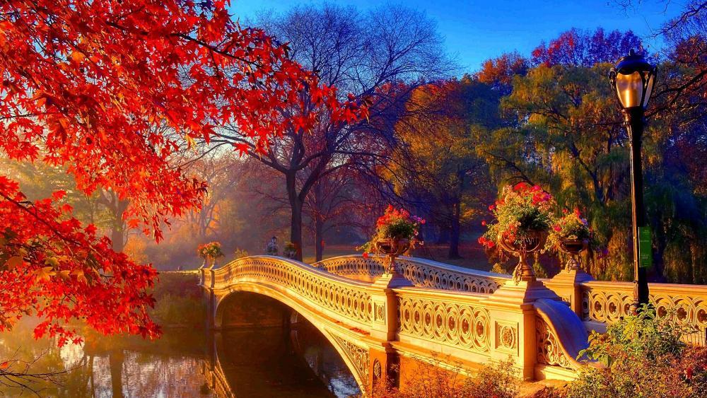 Bow Bridge in Central Park wallpaper