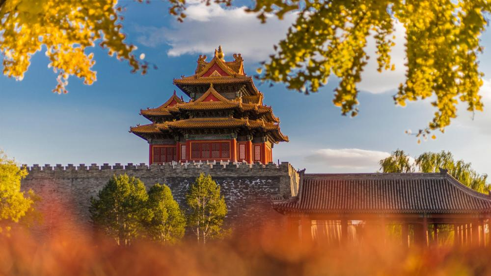 Turret Of Palace Museum at fall (Forbidden city, Beijing) wallpaper
