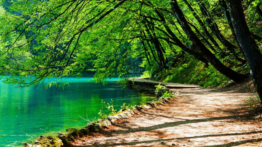 Plitvice Lakes National Park, Croatia wallpaper