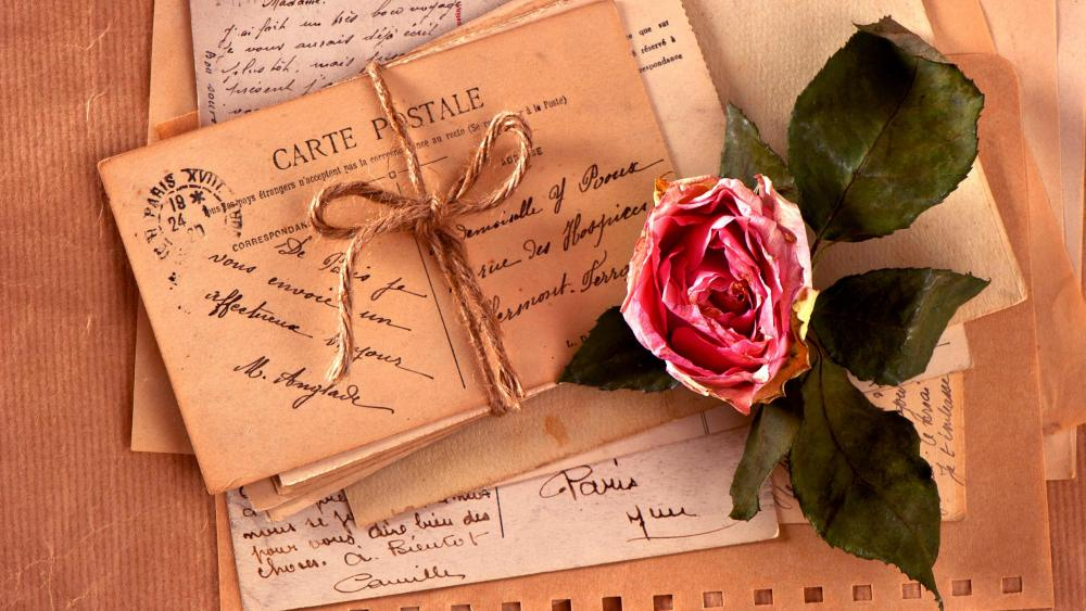 Vintage love letters with a rose wallpaper