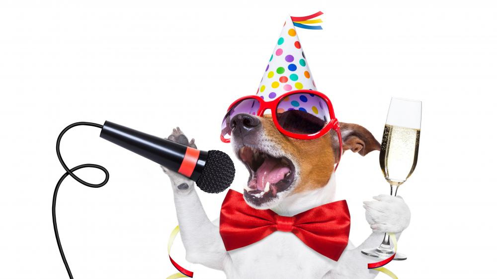 Singing Jack Russel Terrier wallpaper