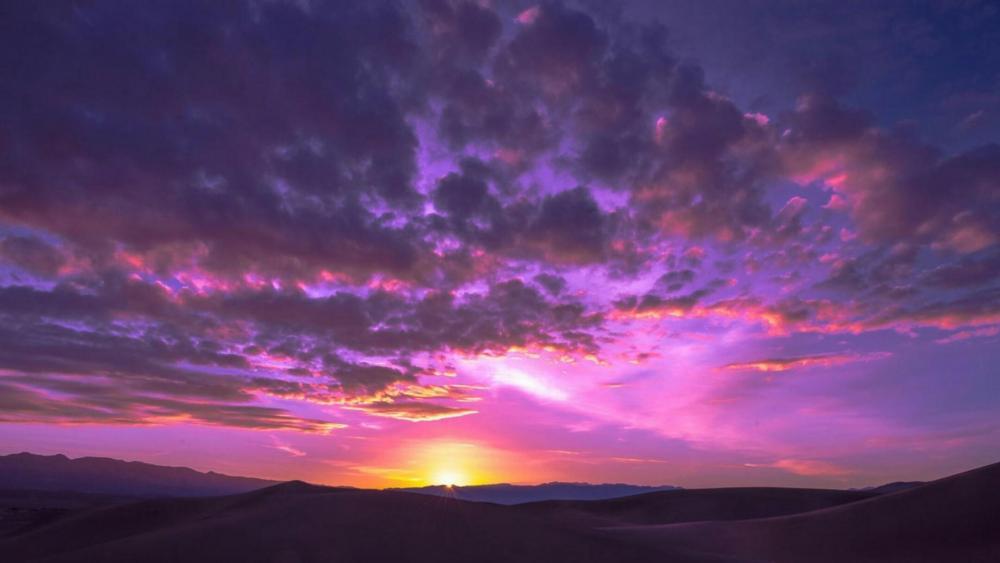 Desert dawn wallpaper