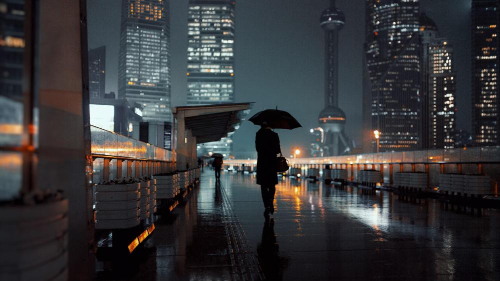 Rainy night in Shanghai wallpaper