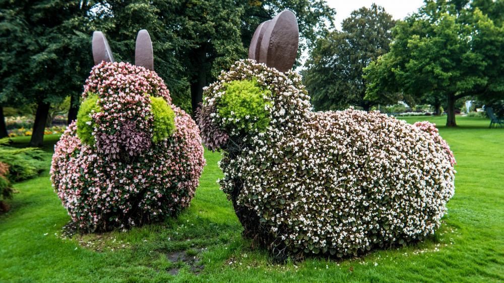 Easter rabbit bushes wallpaper