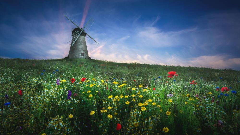 Whitburn Windmill wallpaper