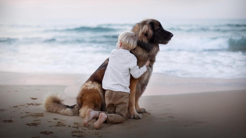 Boy with dog wallpaper