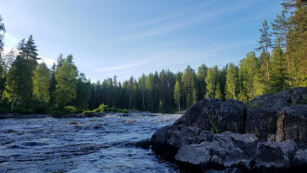 Karelian riffle wallpaper