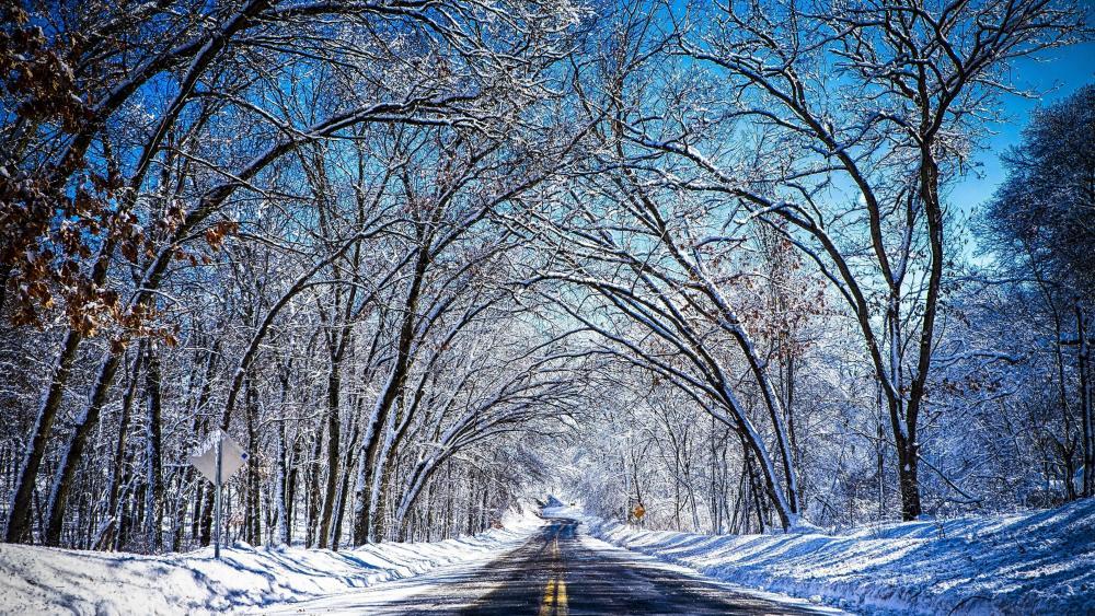 Winter tunnel road wallpaper