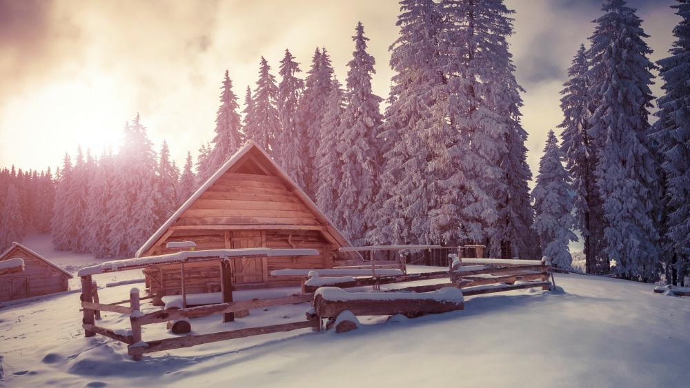 Wooden house under snow wallpaper