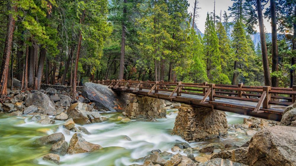Footbridge over Merced River (Yosemite National Park) wallpaper