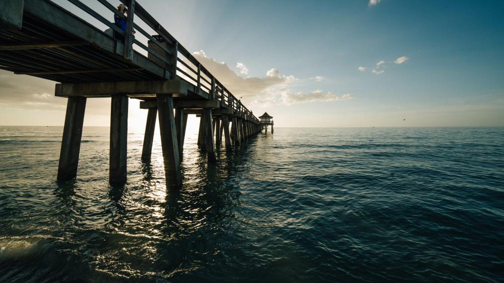 Naples Pier wallpaper