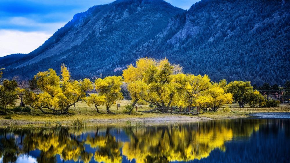 Palmer Lake at fall wallpaper