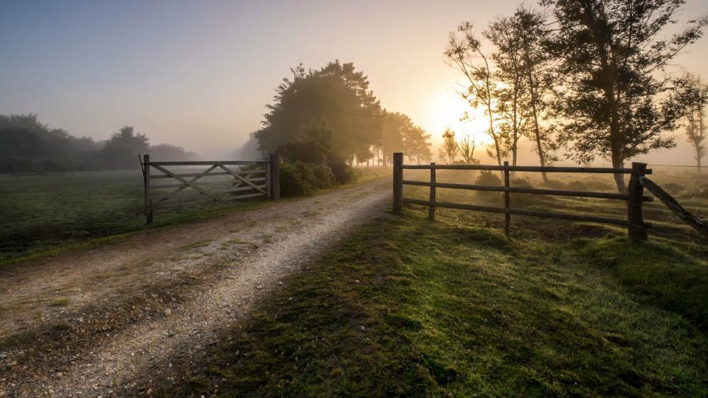 Countryside morning wallpaper