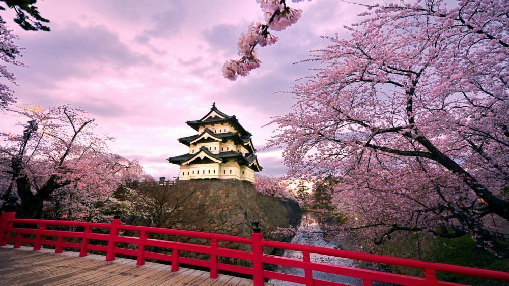 Hirosaki Castle at spring wallpaper