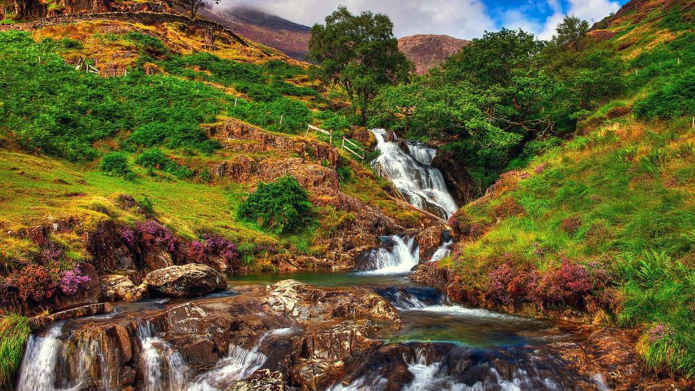 Swallow Falls, Snowdonia National Park in North Wales wallpaper
