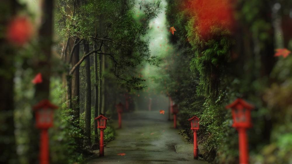 Alley with red lanterns wallpaper