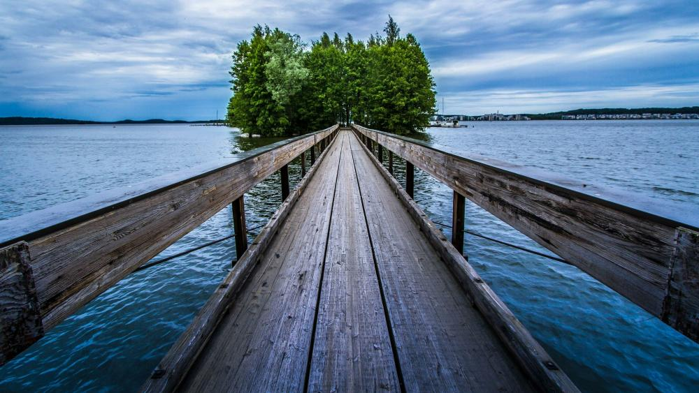 Wooden pier leading to trees wallpaper
