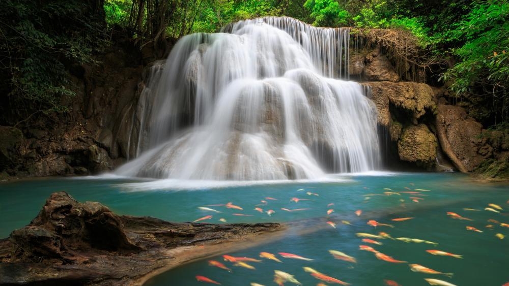 Huay Maekamin Waterfall wallpaper