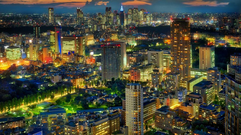Tokyo skyline at night wallpaper