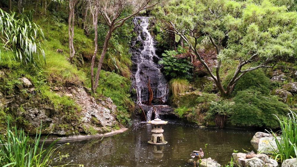 Wellington Botanic Gardens wallpaper