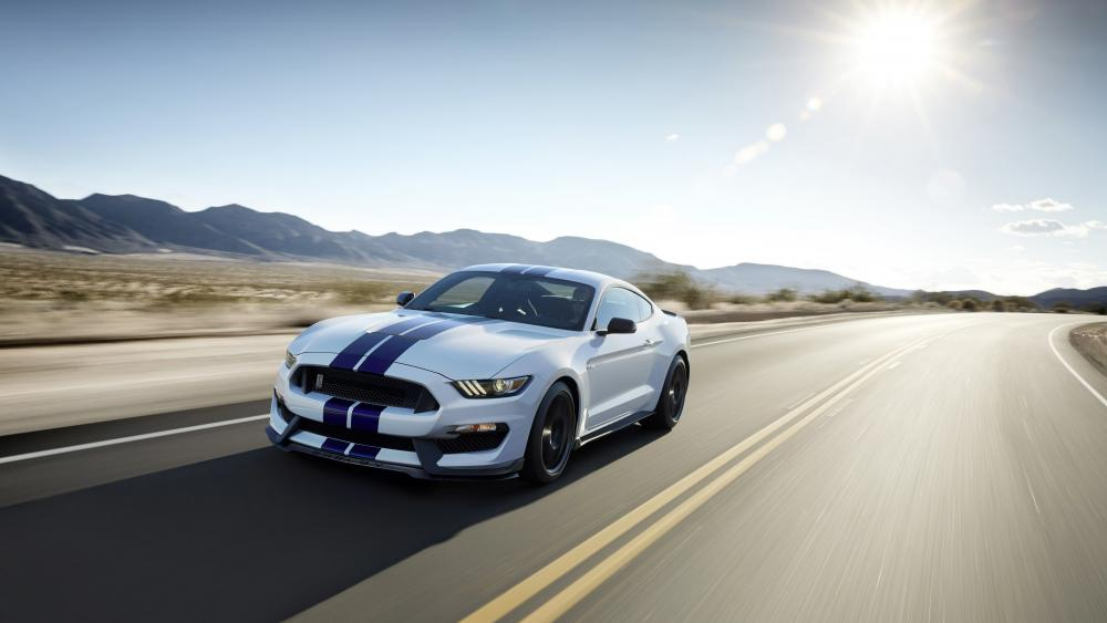 Ford Shelby GT350 Mustang wallpaper