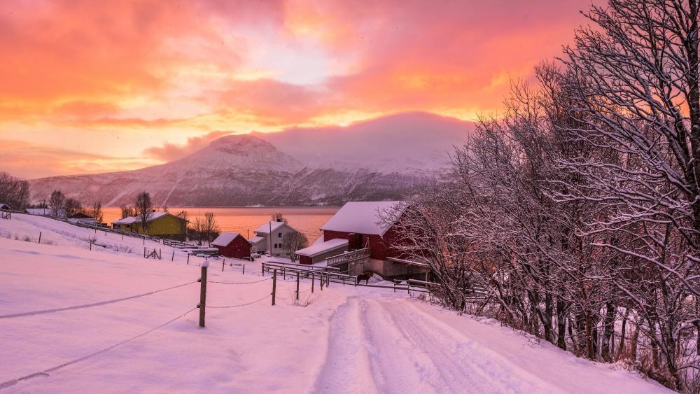 Colorful winter landscape wallpaper
