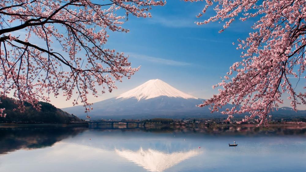 Mount Fuji at spring wallpaper
