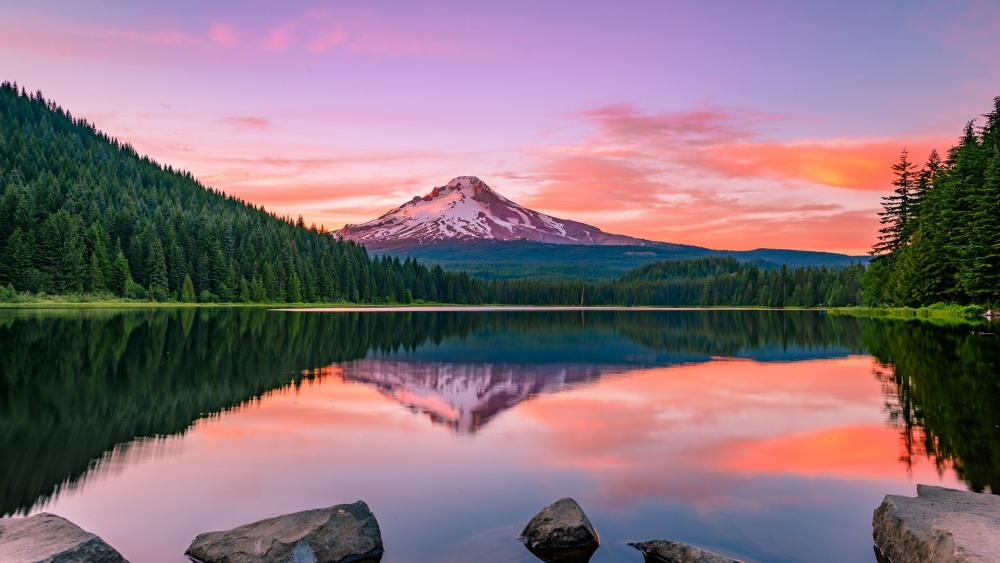 Mount Hood reflected in the Trillium Lake wallpaper