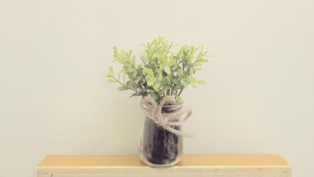 A simple flowerpot wallpaper