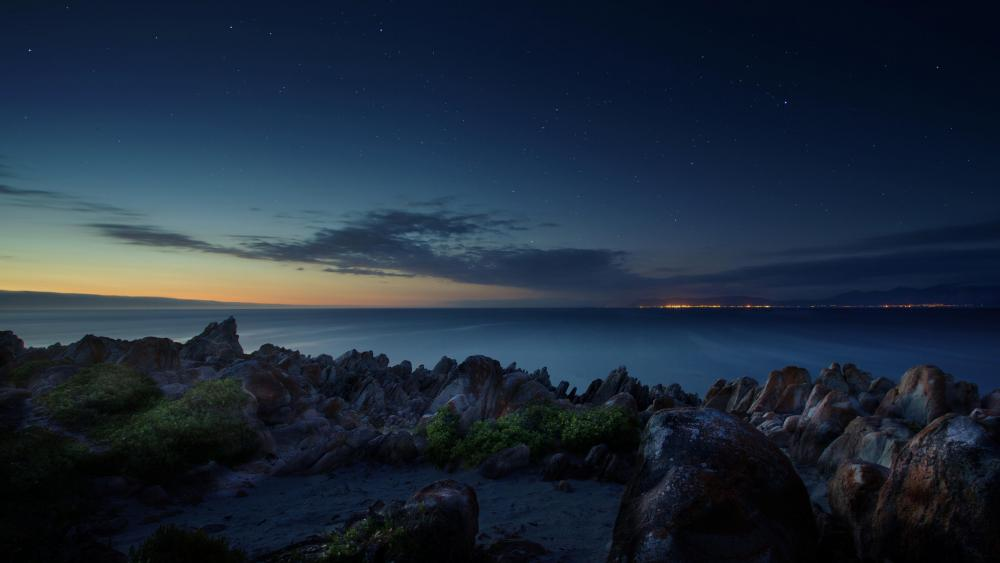 Starry sky over the ocean shore at South Africa wallpaper