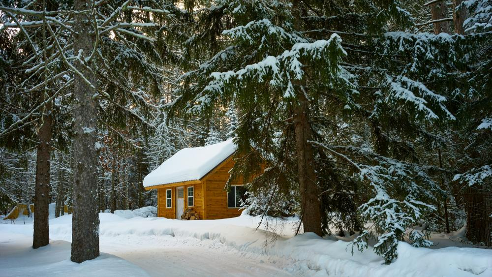 Winter forest cottage wallpaper