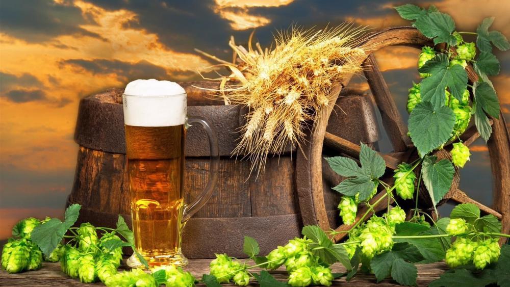 Beer wallpaper