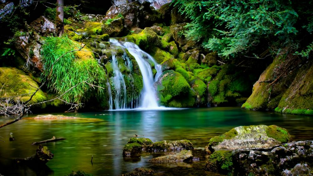 Mossy waterfall wallpaper