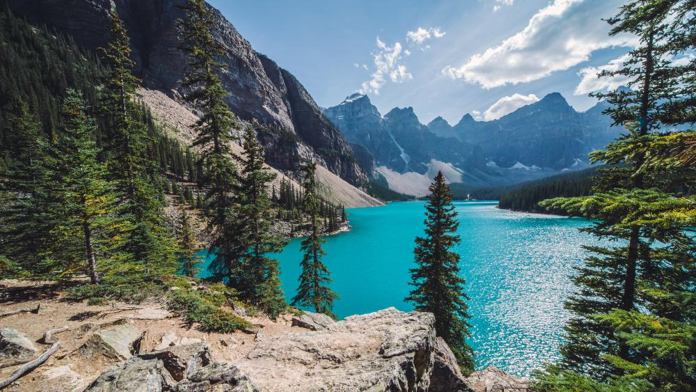 Moraine Lake (Banff National Park) wallpaper