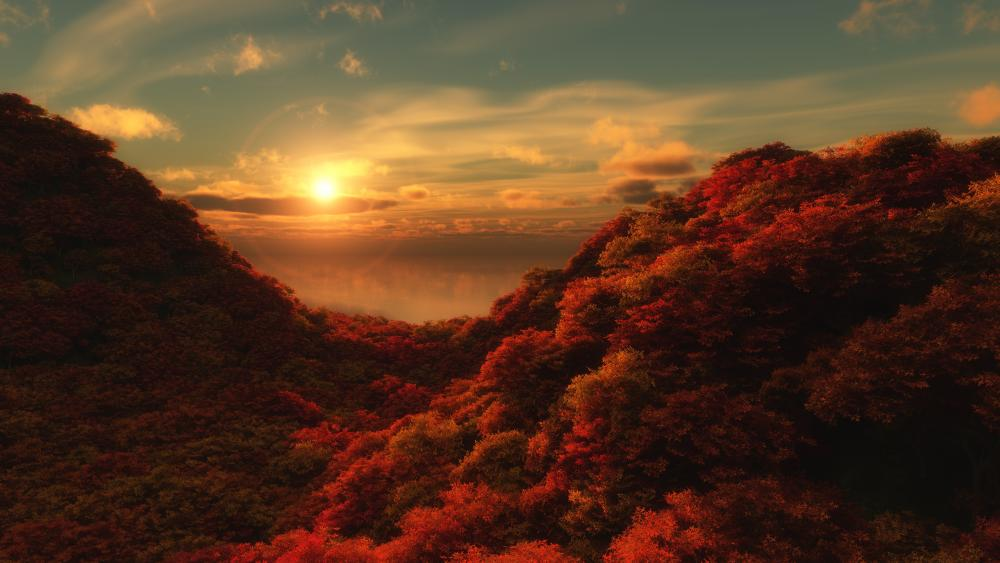 Red forest at sunrise wallpaper