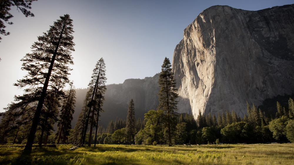El Capitan from Yosemite Valley wallpaper