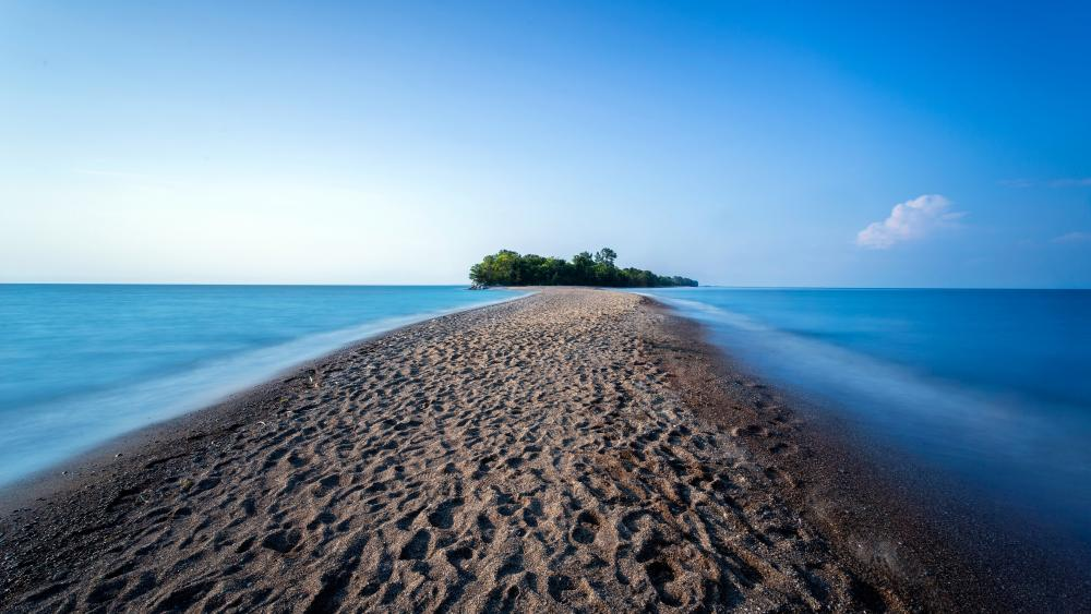 Point Pelee National Park (Lake Erie, Canada) wallpaper