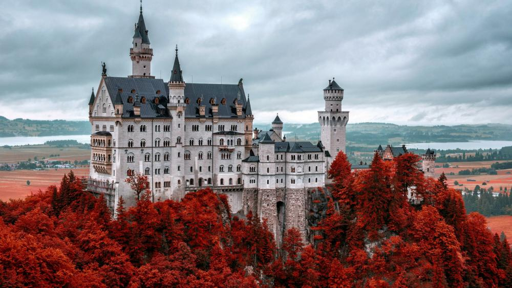 Red autumn trees around Neuschwanstein Castle wallpaper