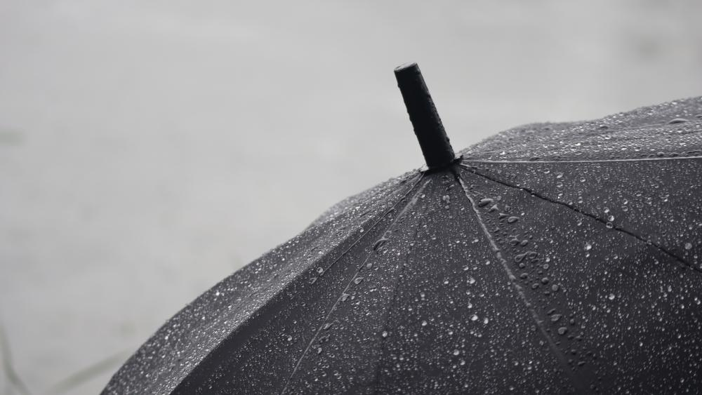 Black umbrella wallpaper