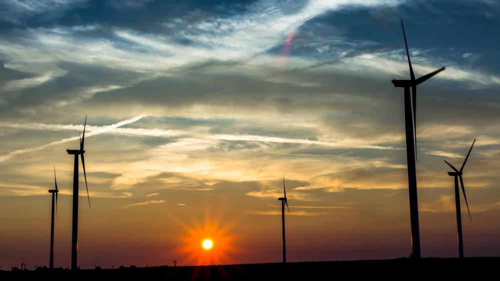 Wind farm in the sunset wallpaper