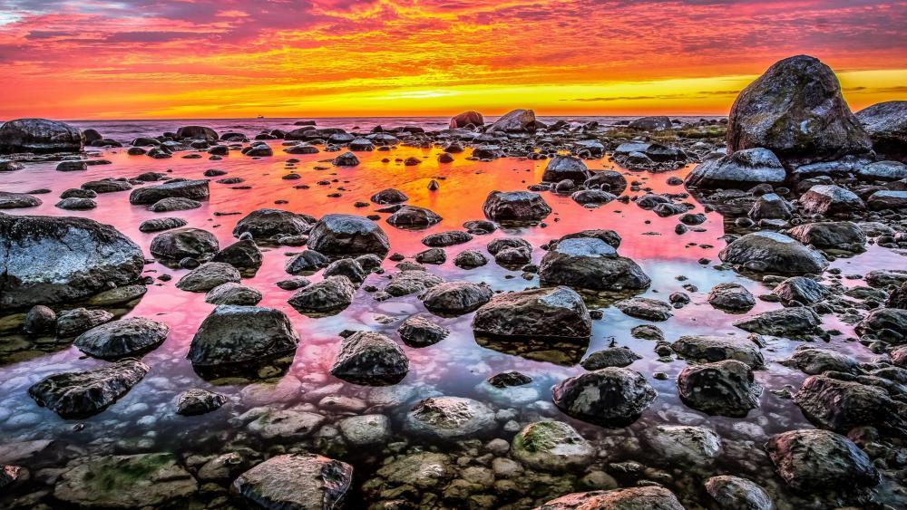 Rocky shore at sunset wallpaper