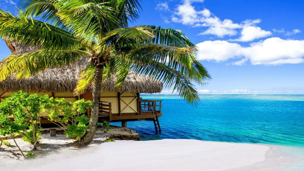 Bungalow in the Moorea Island wallpaper