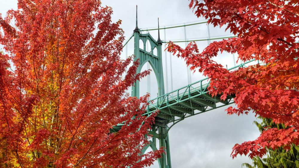 St. Johns Bridge from Cathedral Park Trail wallpaper