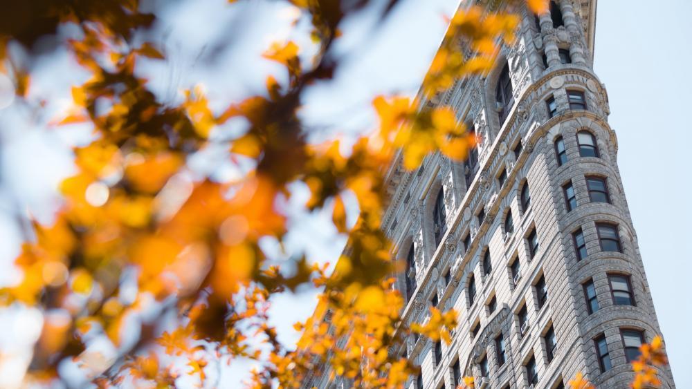 Flatiron Building (Midtown Manhattan) wallpaper