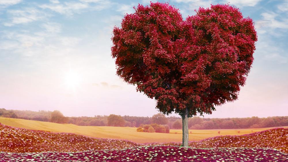 Red heart foliage tree in the flower field wallpaper