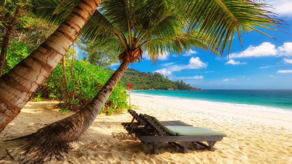 Relax in Seychelles wallpaper
